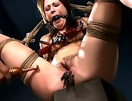 Bitch hogtied tight and fucked